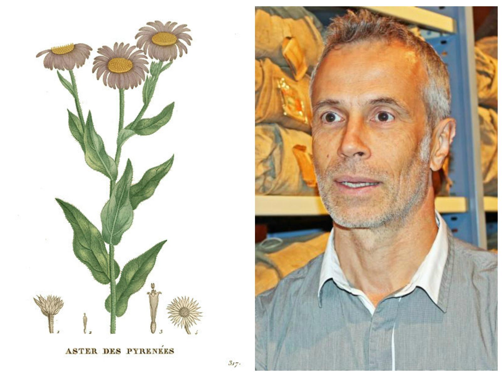 Conférence avec Gérard Largier, directeur du Conservatoire botanique national des Pyrénées et de Midi-Pyrénées