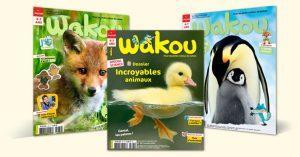 Wakou Magazine