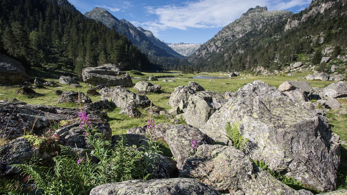 Plateau du Cayan © Pierre Meyer