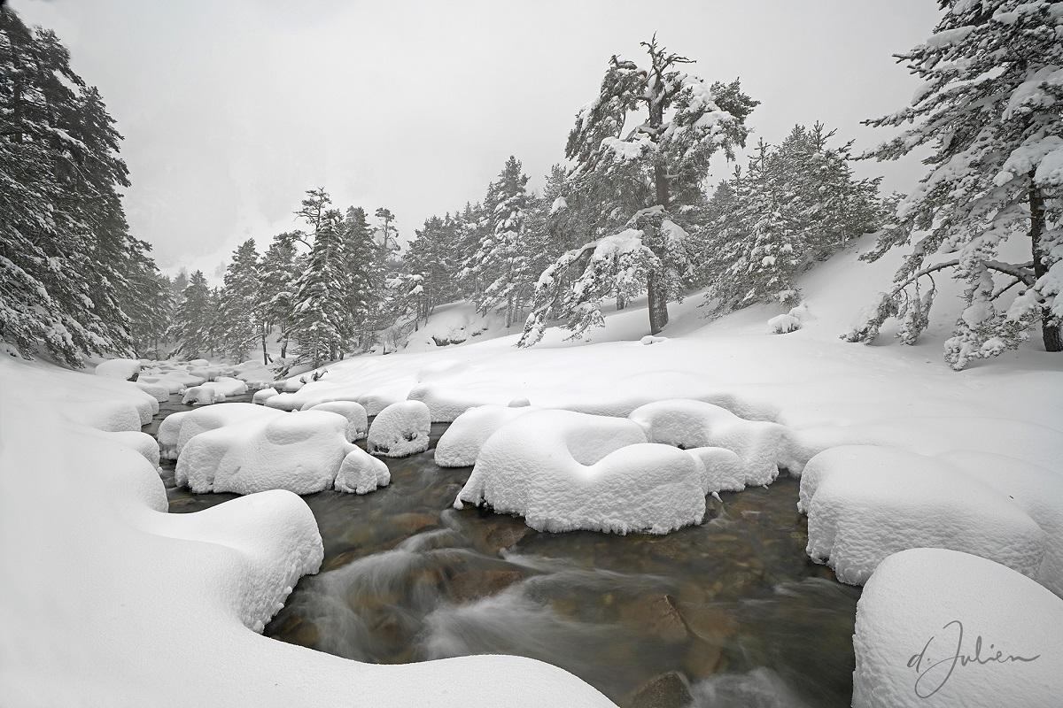Blanc comme neige © Dominique Julien