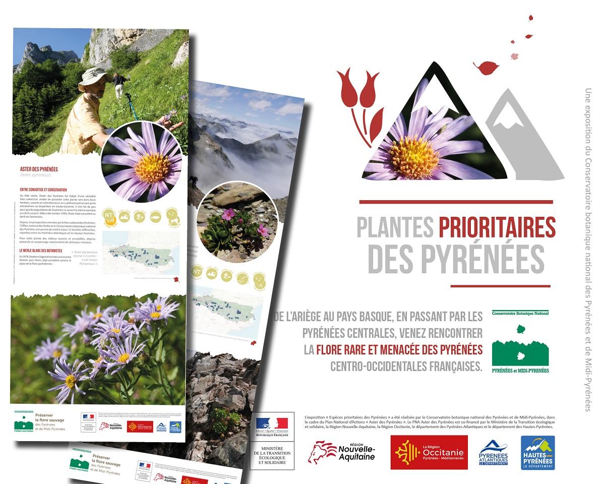 Plantes prioritaires des Pyrénées © Conservatoire botanique national des Pyrénées