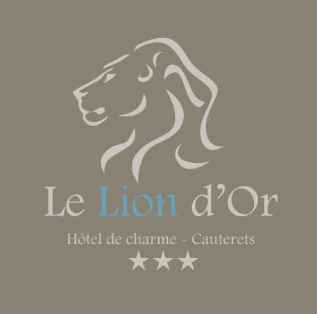 Hôtel Le Lion d'Or***